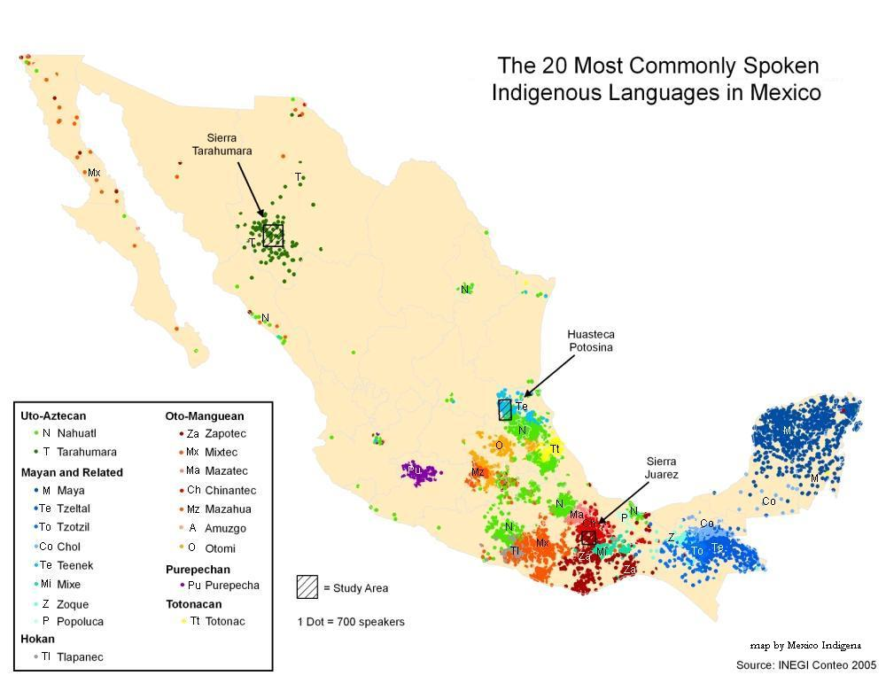 mexicos indigenous populations